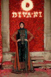 divani-bridal-couture-collection-winter-dresses-2016-17-2
