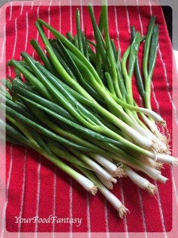 Spring Onions for Spring Onion Curry | YourFoodFantasy.com