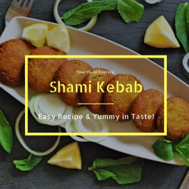 Easy Shami Kebab Recipe | YourFoodFantasy.com
