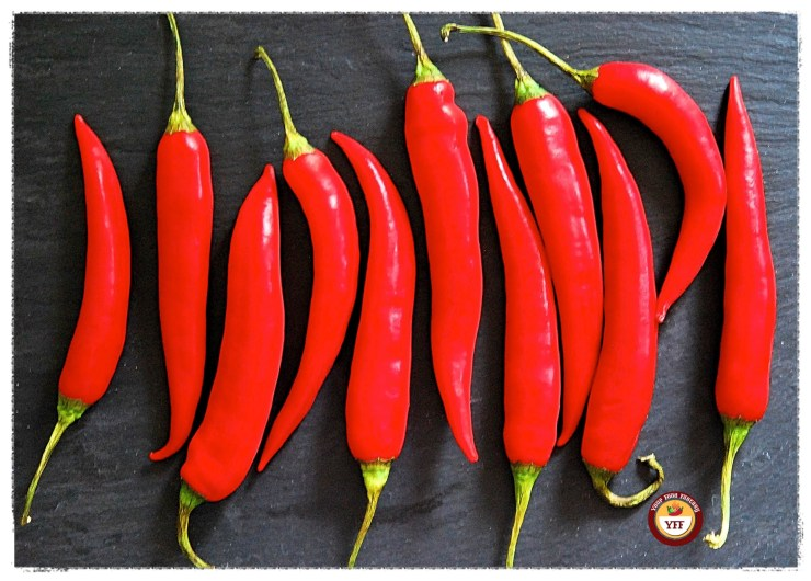 Red Chillies for Chilli Fritters | Your Food Fantasy