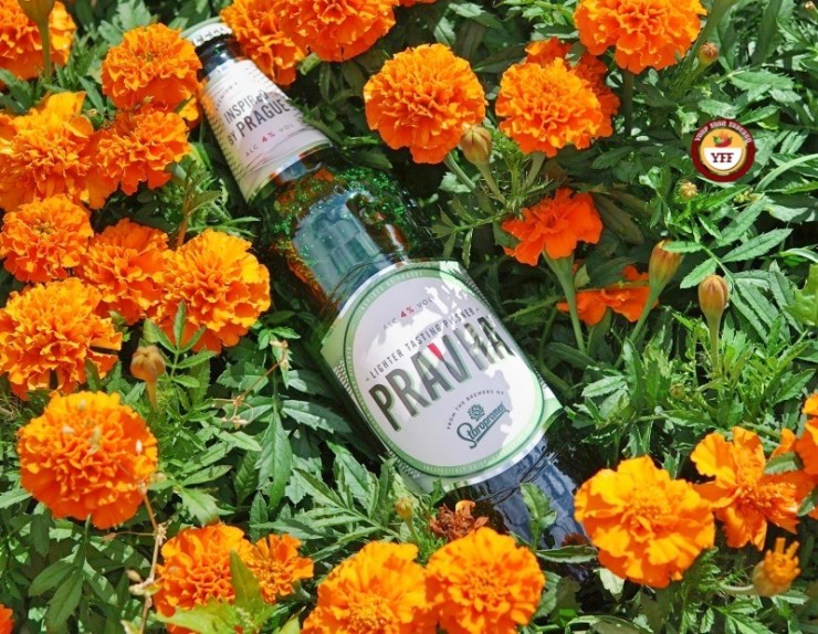 Pravha Beer Review | Your Food Fantasy