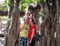 Family Banyan