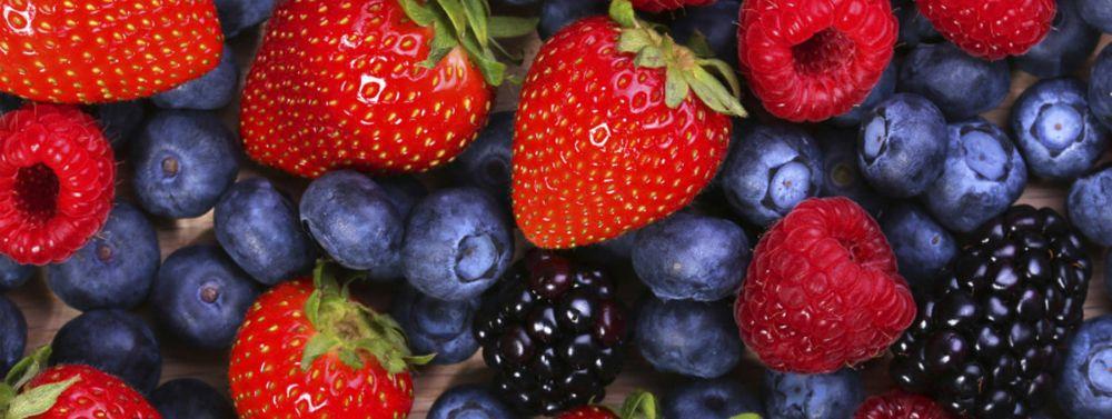 MIND diet rallenta l'invecchiamento del cervello