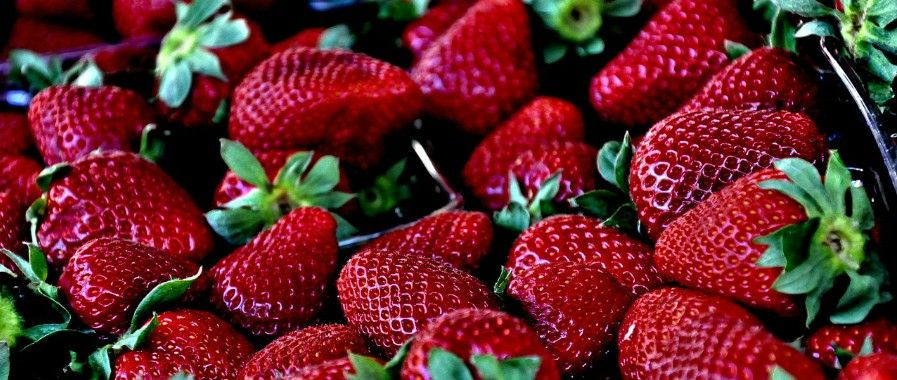 Fragole deliziose e ricche di salute