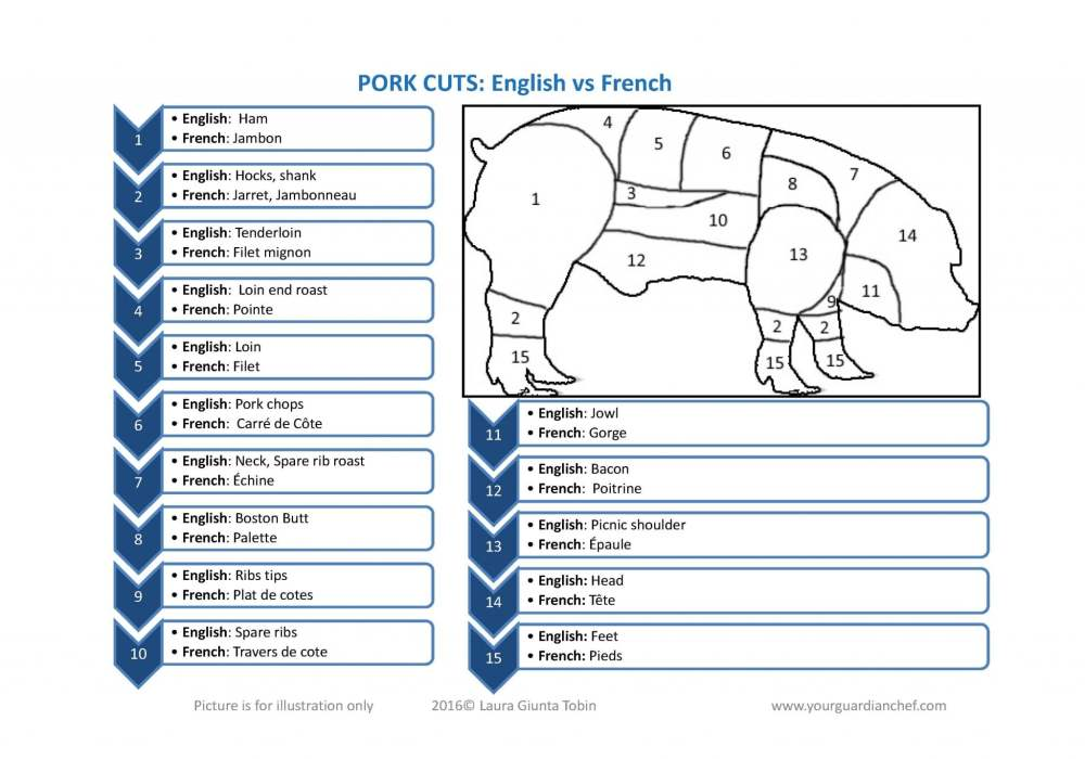 medium resolution of pig rib diagram