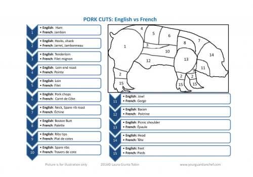 small resolution of pig rib diagram