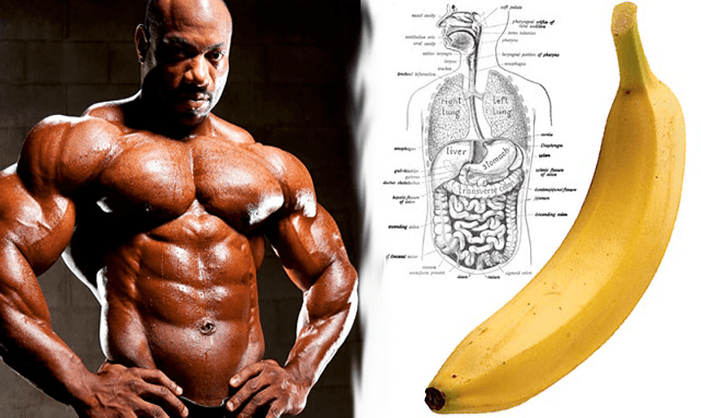 banana in bodybuilding的圖片搜尋結果