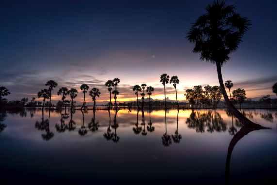 dawn landscape nature sky