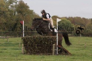 Pony jumping a hedge