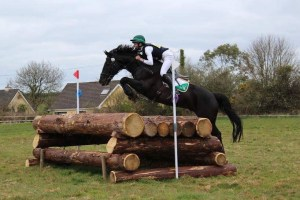 Black horse jumping cross country fence