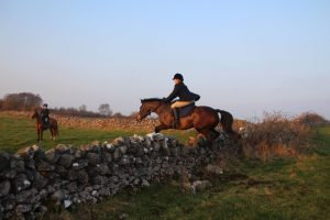 Bay pony Barnaboy Ann jumping a stone wall out hunting.