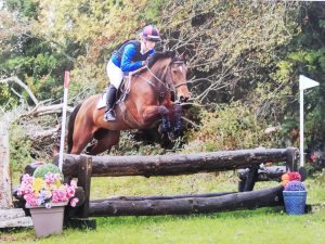 Bay pony jumping a cross country fence