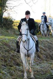 Snowman, a white horse out hunting in Ireland