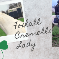 Foxhall Cremello Lady