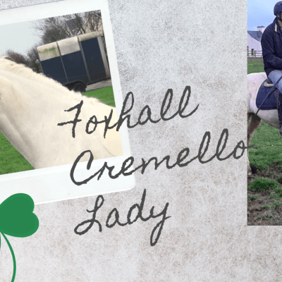 Foxhall Cremello Lady (sold)