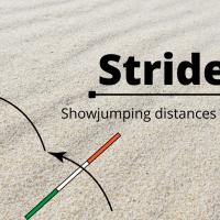 Strides! Show jumping distances explained