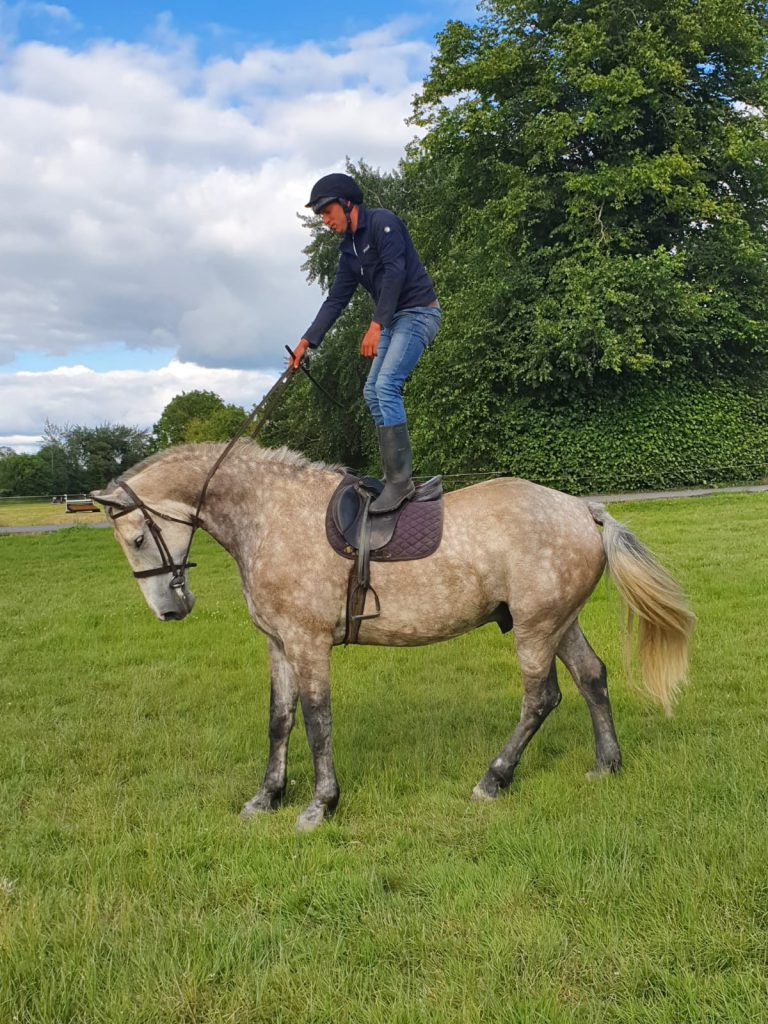 Man standing on a grey horse