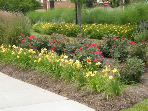 commercial landscape design northern