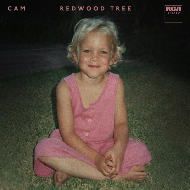 Cam Releases New Single, 'Redwood Tree'