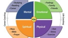 career coaching limited caribbean mentors bonus episode 6 work life balance for fulfillment