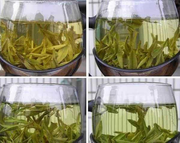 5-benefits-of-green-tea-extract-10