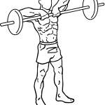 upright barbell row exercise