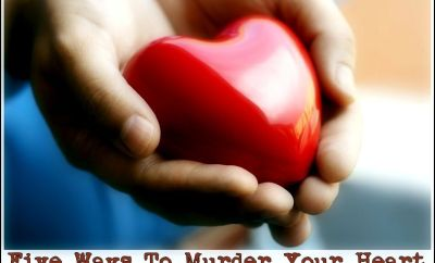five ways to murder your heart vidya sury