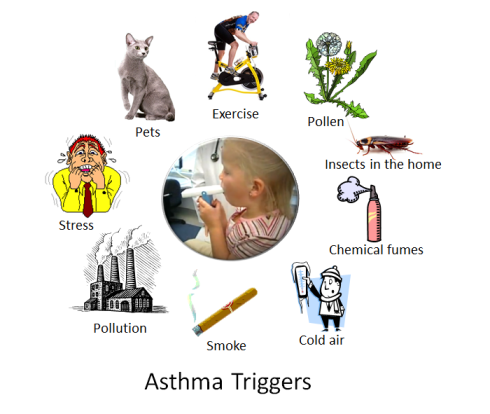 cough 101 asthma triggers