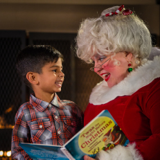 Mrs. Claus Traditions GRID