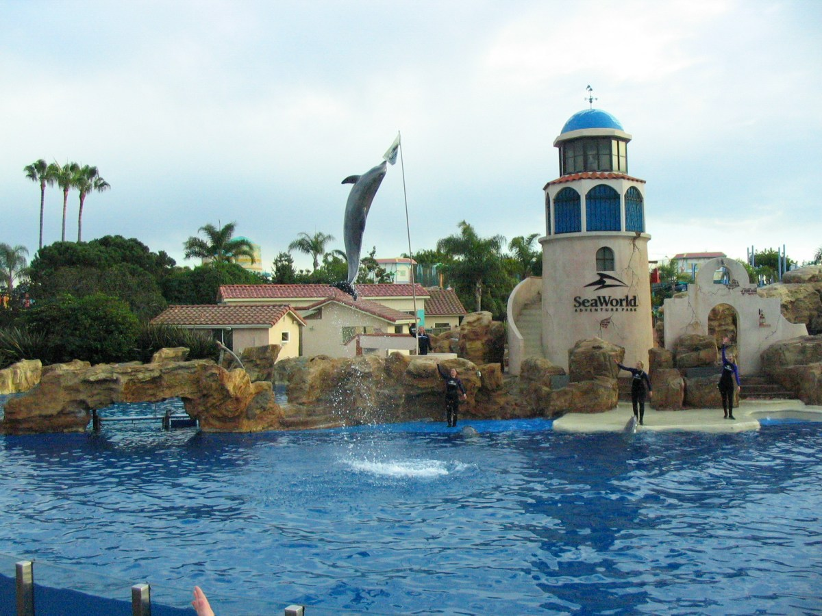 Sea World's New Paradise Nights Dinner & Dolphin Show at Discovery Cove