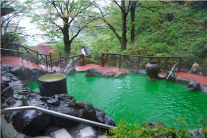 Green Tea Bath