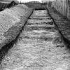 1954-stonehenge_copy48