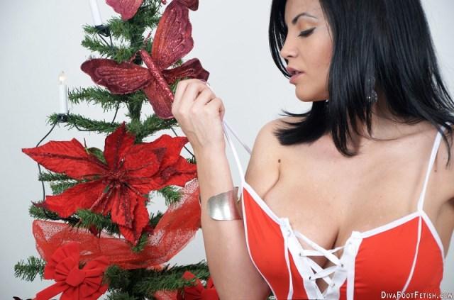 hdset06-christmas-tree-01-800x529