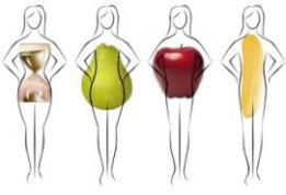 4 female body shape