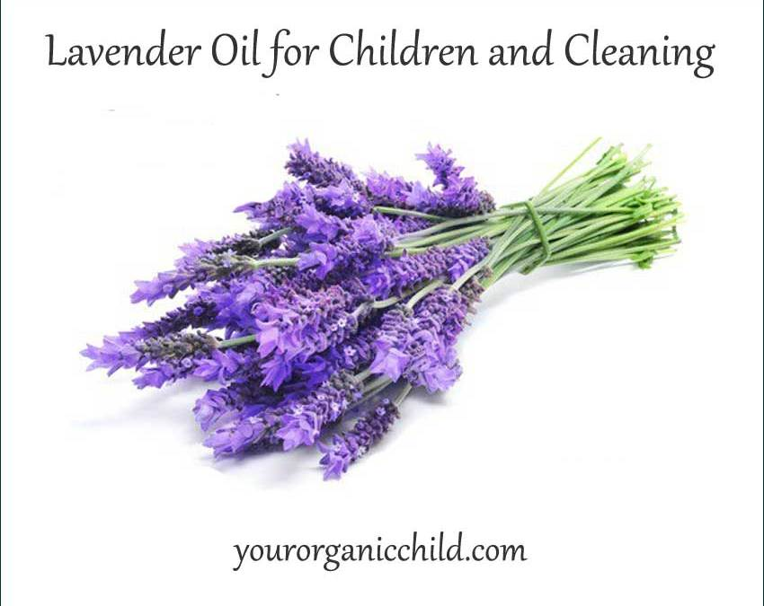 Lavender oil for personal use, for children and for cleaning