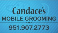 Candaces Grooming