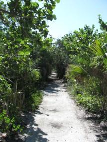 Barefoot Beach Naples FL