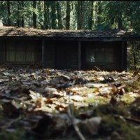 How many horror movies feature THE WOODS?