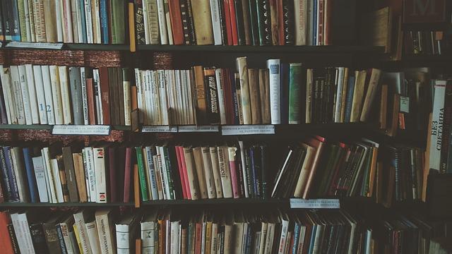 bookcase-1869616_640