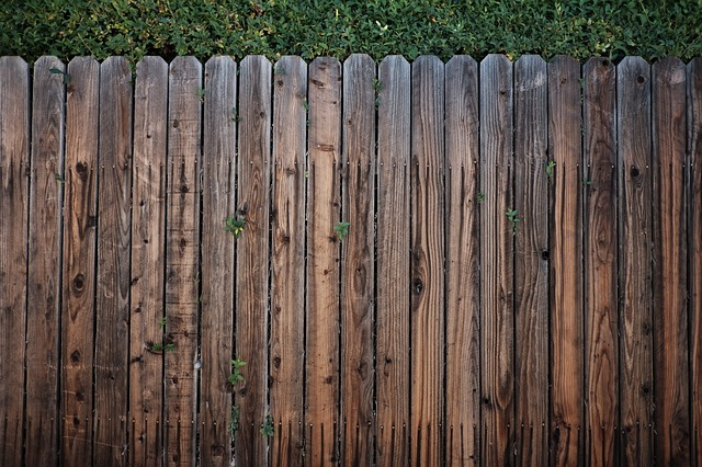 fence-1838771_640