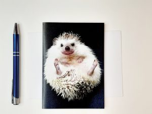 Hedgehog Greetings Card