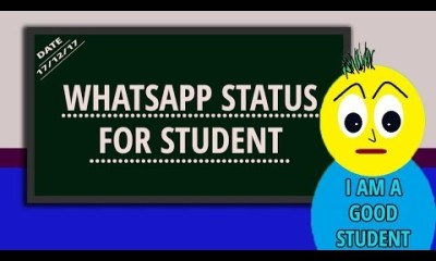 whatsapp status for life