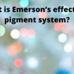 what is emerson's effect and pigment system ?