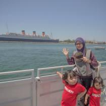 Cruise melawat ikan lumba-lumba kat tengah laut