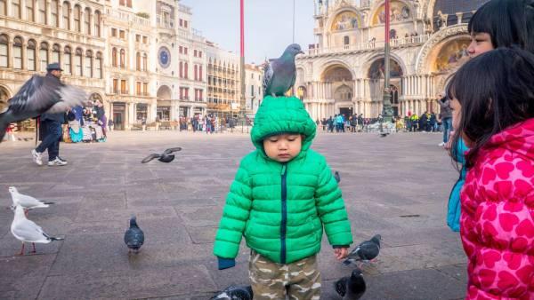 Am Merpati Venice