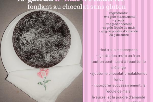 gâteau chocolat sans gluten nature ferme bio naturopathie yourte végétale saint françois longchamp savoie bien être