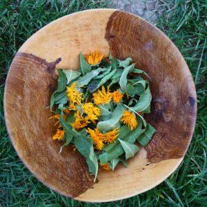 tisane c'est d'la bonne soins naturopathie nature ferme bio yourte végétale saint françois longchamp savoie bien être