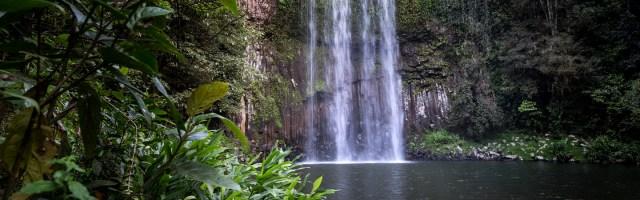 Atherton Tablelands | Millaa Millaa Falls