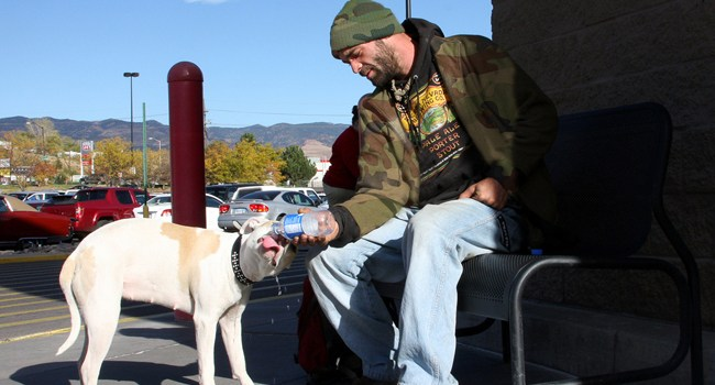 Veteran with Dog, homeless veteran, helping veterans, Veteran Discounts - Bill Salvatore, Realty Excellence East Valley - Arizona Elite Properties - 602-999-0952
