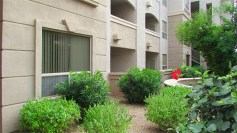Off-white stucco front condo with bushes in font - 5303 N 7th St, Phoenix AZ - Single Level Condo for sale - Bill Salvatore, Arizona Elite Properties 602-999-0952 - Arizona Real Estate